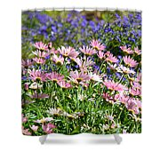 Background Of Colorful Flowers Shower Curtain
