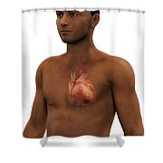 The Heart Shower Curtain