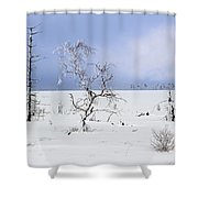 130201p330 Shower Curtain