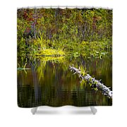 131005b-052 Forest Marsh 2 Shower Curtain