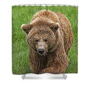 131018p213 Shower Curtain