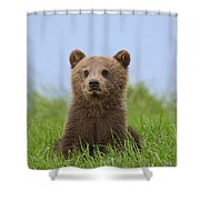 131018p242 Shower Curtain