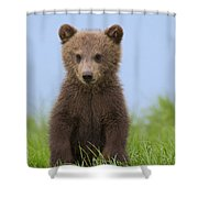131018p243 Shower Curtain