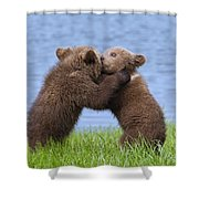 131018p256 Shower Curtain