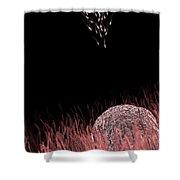 Fertilization Shower Curtain