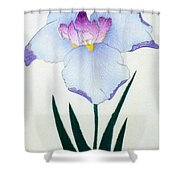 Japanese Flower Shower Curtain
