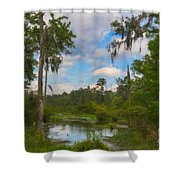 Lowcountry Marsh Shower Curtain