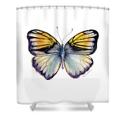 14 Pieridae Butterfly Shower Curtain