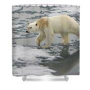 Polar Bear Walking On Ice Shower Curtain