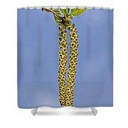 140420p090 Shower Curtain