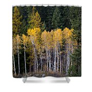 Guardians Of Trestle Creek  -  141102a-138 Shower Curtain
