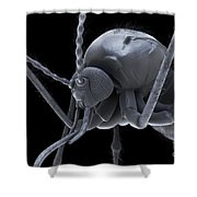 Anopheles Mosquito Shower Curtain