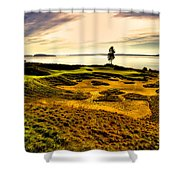 #15 At Chambers Bay Golf Course  Shower Curtain by David Patterson