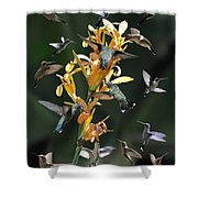 15 Hummingbirds Shower Curtain