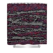 1548 Abstract Thought Shower Curtain