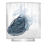 Coronary Blood Supply Shower Curtain
