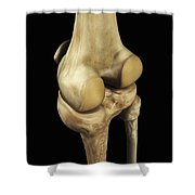 Knee Bones Right Shower Curtain