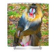 Mandrill Shower Curtain