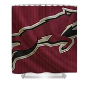 Phoenix Coyotes Shower Curtain
