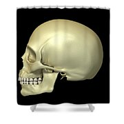 The Skull Shower Curtain