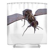 Tsetse Fly Shower Curtain