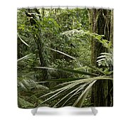 Jungle Leaves Shower Curtain