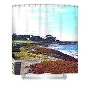 17 Mile Drive Shore Line II Shower Curtain by Barbara Snyder
