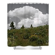 Cloudy With Green Shower Curtain