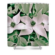 Spring 2013 Shower Curtain