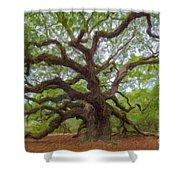 Southern Angel Oak  Shower Curtain