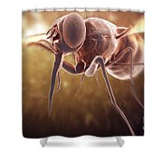Tsetse Fly Shower Curtain