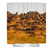 1800s Chinese Rock Fence Shower Curtain