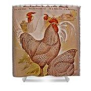1909 California State Fair Poster Shower Curtain