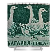1955 Bulgarian Geese Stamp Shower Curtain