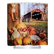1960s Harvest Display Of Pumpkins Shower Curtain
