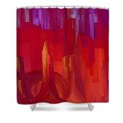 1998043 Shower Curtain