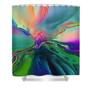 1999012 Shower Curtain