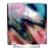1999079 Shower Curtain