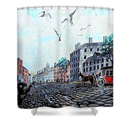 19th Century Mural Shower Curtain