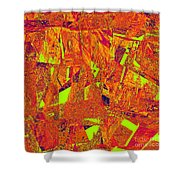 0174 Abstract Thought Shower Curtain