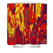 0656 Abstract Thought Shower Curtain