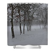 2 2014 Winter Of The Snow Shower Curtain