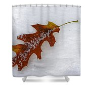 A Moment Together Shower Curtain
