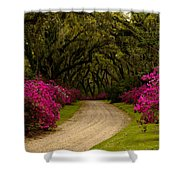 Afton Villa Drive Shower Curtain