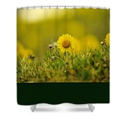 Alpine Flowers Shower Curtain