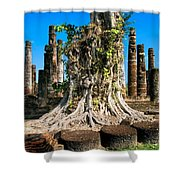 Ancient Temple Ruins Shower Curtain