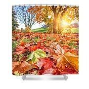 Autumn Fall Landscape In Park Shower Curtain