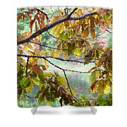 Autumn Leaves 1 Shower Curtain