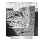 Babylon Ishtar Gate Shower Curtain