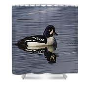 Barrows Goldeneye Shower Curtain
